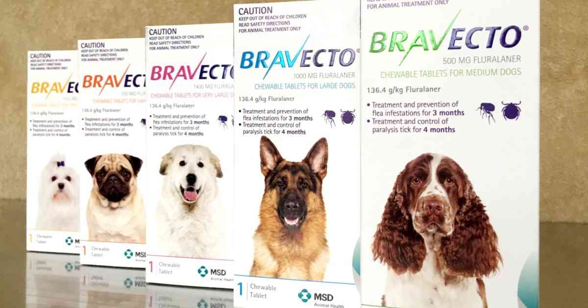bravecto flea tablet